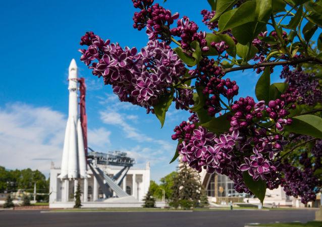 全俄展覽中心「東方號」運載火箭模型旁盛開的丁香