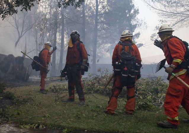美加州大火(資料圖片)