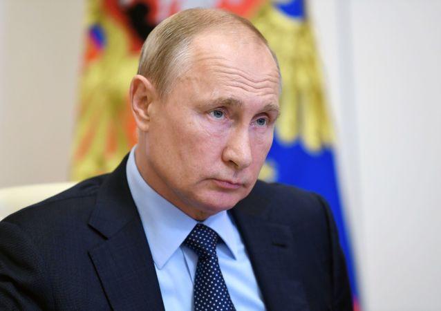 普京駁斥俄共對憲法修正案的批評