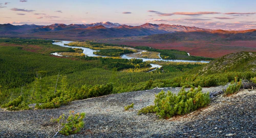 俄總理簽署在雅庫特建立「熊島」自然保護區的決議